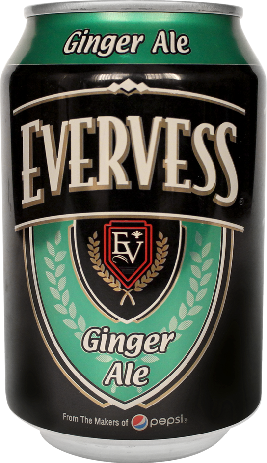 Ginger Ale 300 ml Can